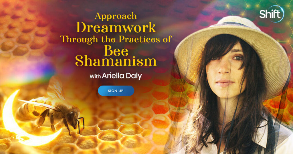 Approach Dreamwork Through the Practices of Bee Shamanism with Ariella Daly